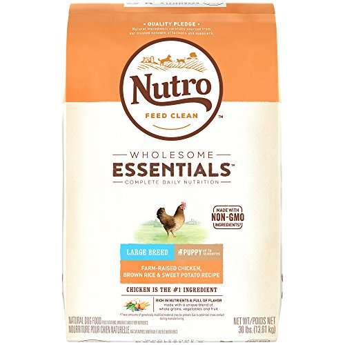 NUTRO WHOLESOME ESSENTIALS Large Breed Puppy Farm-Raised Chicken, Brown Rice & Sweet Potato Recipe Dry Food Plus Vitamins, Minerals & Other Nutrients; (1) 30-lb.; Rich in Nutrients and Full of Flavor