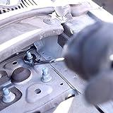 Neiko 03114A Flex-Head Double Box End Ratcheting