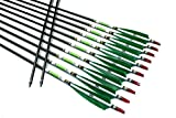 TTAD 12PK Green Turkey Feather Carbon arrows Spine 500 31'' arrows Hunting & Practice For Compound bow Recurve Longbow
