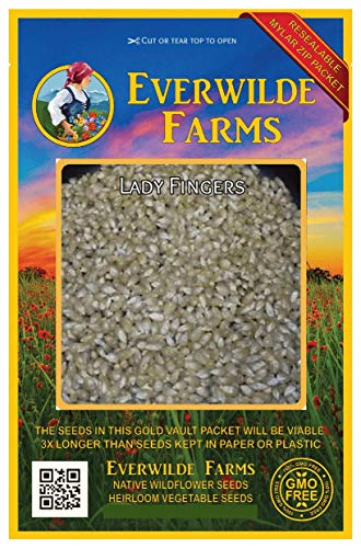 Everwilde Farms - 100 Lady Fingers Open Pollinated Corn Seeds - Gold Vault Jumbo Seed Packet ()