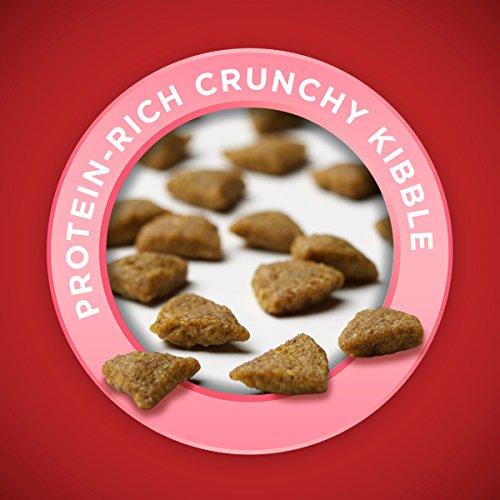 Purina-ONE-SmartBlend-Natural-Sensitive-Systems-Formula-Adult-Dry-Dog-Food