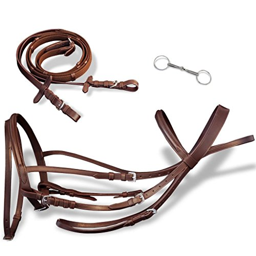 Tidyard AdjustableFlash Bridle with Reins and Bit Leather Cambered Noseband Brown -