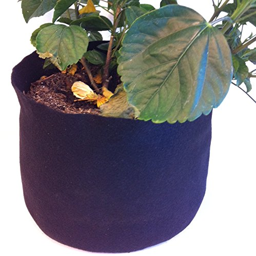 10 Pack – 1 Gallon Felt Fabric Grow Bags 7