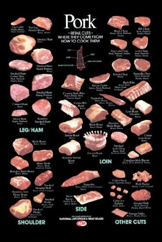 Amazon com pork cuts poster butcher chart 24inx36in prints