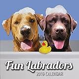 Fun Labradors 2019 Labrador Wall Calendar