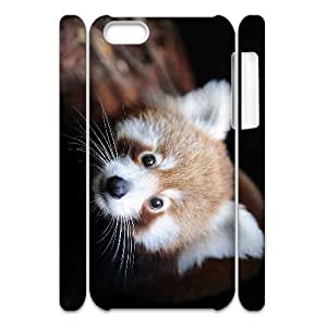 lintao diy Cell phone 3D Bumper Plastic Case Of Raccoon For iPhone 5C