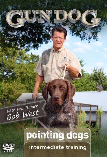 Gun Dog Intermediate Training: Pointing Dogs DVD (Pointing Dog Training Dvd)