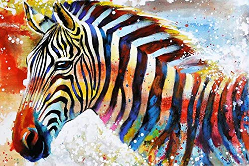 Paint By Numbers For Adults, Diy Painting Paint By Numbers Kits On Canvas,Color Zebra,16X20Inch ()