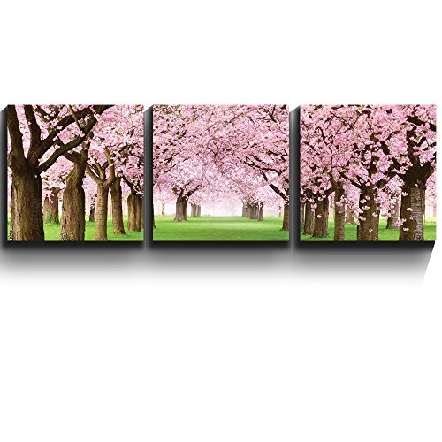 3 Square Panels Contemporary Art Beautiful Cherry Blossom trees Three Gallery ped Printed Piece x 3 Panels