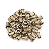 uxcell a17052300ux0571 50Pcs Copper Tone Metal 1/4-20 UNC Rivet Nut Flat Head Insert Nutsert for Car 50 Pack