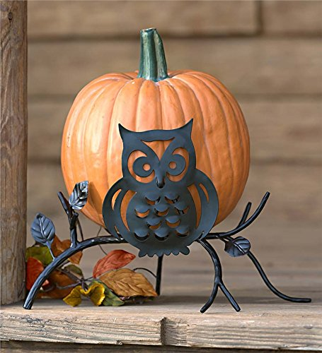 Plow & Hearth 87972 Owl On Branch Pumpkin Holder Display Stand Halloween Decoration, 16.5