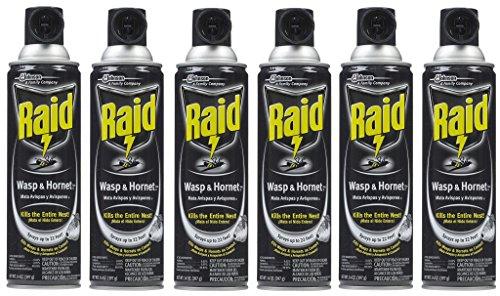 raid-wasp-hornet-killer-33-spray-fsutgd-6pack-14-ounce