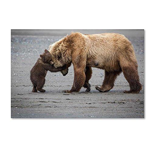 - A Little Bear Hug by Renee Doyle, 30x47-Inch Canvas Wall Art