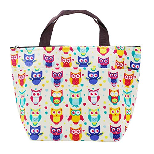 MoModer Reusable Tote Bag Owl Insulated Lunch Bags for Women