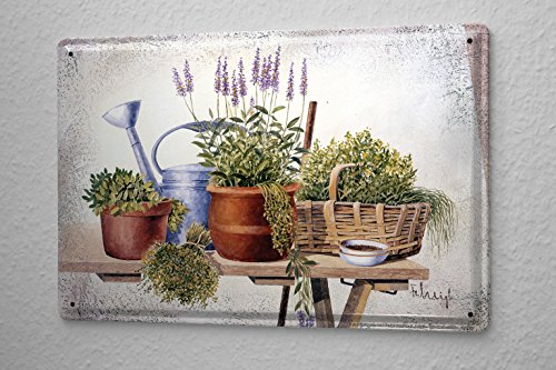 Life Vegetable Still - Tin Sign Gallery painter Franz Heigl picture still life vegetable garden table lavender pot 20x30 cm metal shield Wall Art Deco decoration retro Advertising Vintage
