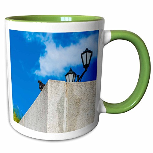 Two Tone Granite Green - 3dRose Alexis Photography - Birds - Image of black dove, green palm, granite parapet, lamp and blue sky - 11oz Two-Tone Green Mug (mug_273221_7)