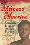 img - for Africans in America: America's Journey Through Slavery by Smith, Patricia, Johnson, Charles, WGBH Series Research Team(November 1, 1998) Hardcover book / textbook / text book