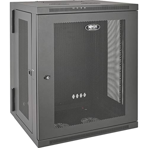 Tripp Lite 15U Wall Mount Rack Enclosure Server Cabinet, Hinged, 20.5