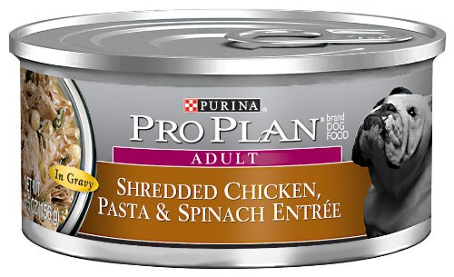 Purina Pro Plan Shredded Chicken and Pasta Pet Food, 5.5-Ounce (Pack of 24), My Pet Supplies