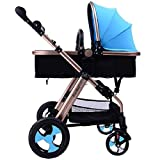 Image of High View Folding Baby Stroller,adopt Non-Pneumatic Tire Wheel, Free Use in Winter to Summer.Easy Replacing Armrest and Eating Tray (Blue)