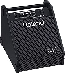 Roland PM-10 Powered Speaker Cabinet, Black from Roland