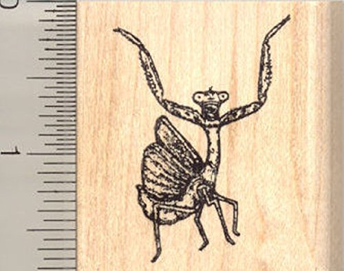 Praying Mantis Rubber Stamp, Threat Display ()
