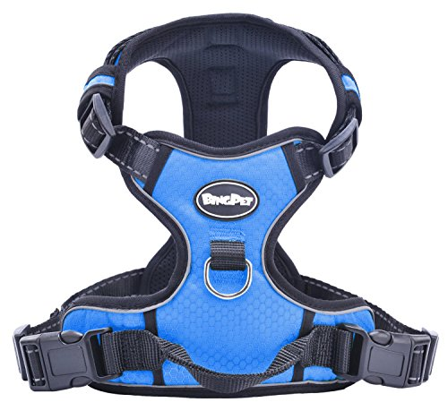 Best No Pull Dog Harness Canada