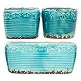 D'vine Dev Country Rustic Blue Garden Pots Set of 3