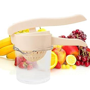 Chinatera 2-in-1 exprimidor y Manual de instrucciones de bayas fruta exprimidor cocina Kitchen: Amazon.es: Hogar