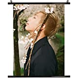 Fanstown Kpop BTS Bangtan Boys Poster Wall Scrolls Poster The Most Beautiful Moment in Life pt.1 24.4 x 16.2 inch Wall Hanging Cloth Poster (A05)