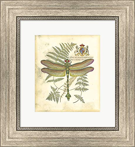 Mini Regal Dragonfly III Framed Art Print Wall Picture, Silver Scoop Frame, 12 x 13 inches