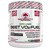 Best Beet Powders - Organic Beet Root Powder V02 Fuel® + BCAA Review