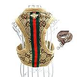 Classic designer pattern monogram dog harness and leash set