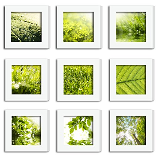 XUFLY 9Pcs 4x4 Real Glass Wood Frame White Square, Fit Family Image Pictures Photo (Window 3.6x3.6 inch), Desktop Stand On Wall Family Combine Leaves Flower Green Decoration (10 Set Pictures) (19) (3x3 Frames)