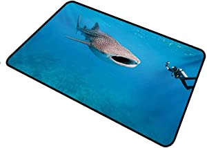 shirlyhome Door Mat Shark for Outdoor Entrance Giant Whale Shark and Underwater Photographer in Wildlife Diving Image Rectangle 35 x 60 inch Violet Blue Pale Grey