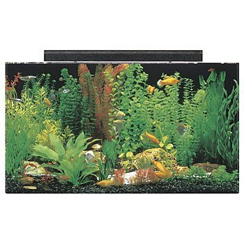 (SeaClear 50 gal Acrylic Aquarium Combo Set, 36 by 15 by 20