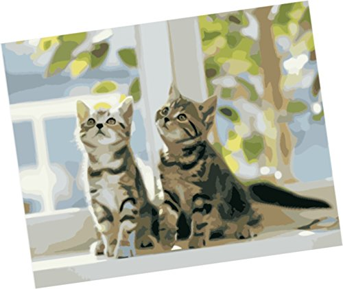 Wowdecor Paint By Numbers Kits For Adults Kids  Number Painting   Kittens  Two Cute Little Cats 16X20 Inch  Framed
