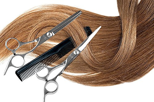 ELFINA Hair Cutting Shears/Scissors and Barber Thinning/Texturizing Set-Size 6.0'' Silver by ELFINA (Image #3)