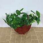 BLagenertJ-Artificial-Lotus-Leaf-Faux-Plastic-Foliage-Plant-Office-Home-Garden-Fish-Tank-Pond-Decoration-Green
