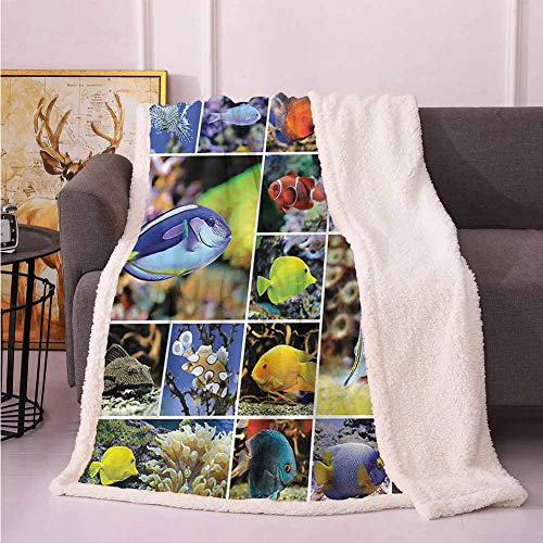 Zara Henry Tropical Fish Fluffy Blanket, Collage of Underwater Photos with Collection of Sea Animals Theme and Decorating Art Print for Bathroom Fuzzy Blankets for Teen Girls 30x50 Inch (Ideas Bathroom Print Animal Decorating)