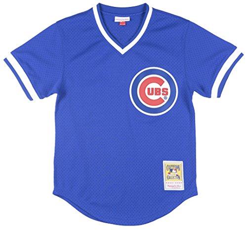 1984 Baseball Olympics (Mitchell & Ness Ryne Sandberg Chicago Cubs 1984 Authentic Jersey Medium)