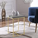Iconic Home Colmar Nightstand Side Table with Ash Veneer Top Brass Brushed Stainless Steel Base, Modern Contemporary, Grey