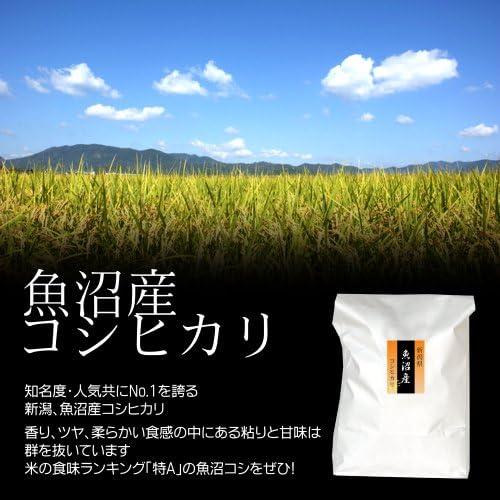 魚沼産コシヒカリ 白米(精米) 25kg(5kg×5袋)/最高級 南魚沼産の一等米
