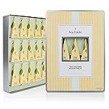 Tea Forté Large Tin Sampler Gift Assortment with 15 Handcrafted Pyramid Tea Infusers - Black Tea, Green Tea, White Tea, Herbal Tea