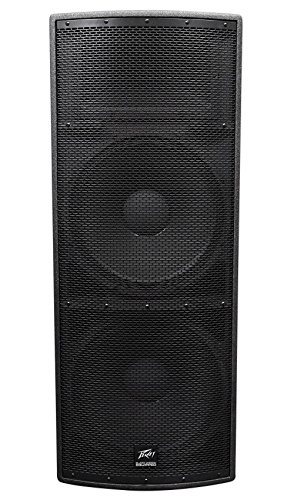 Peavey SP4 Unpowered Speaker Cabinet by Peavey