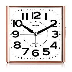 Travel Analog Alarm Clock with Night-Light,Snooze,Ascending Sound Alarm,Movement Quiet Clocks,Battery Powered,Pink