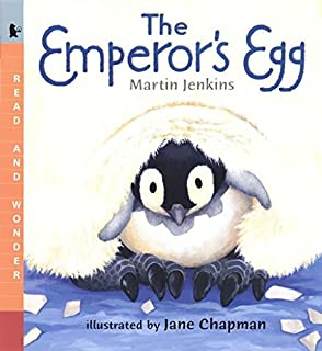 Mirror jeannie baker 9780763648480 amazon books the emperors egg read and wonder fandeluxe Images
