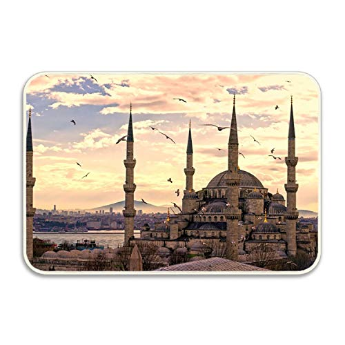 - Viola North Sultan Ahmed Mosque Istanbul Turkey Welcome Carpet Non-Slip Floor Rugs Mat for Outdoor/Bath/Toilet/Living Room/Dining Room/Playroom,Doormat Size 18x30 in