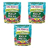Dr Earth Pure & Natural Kelp Meal 2 lb (6 LBS.)…
