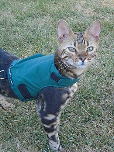 Mynwood Cat Jacket//Harness High Viz Kitten up to 8month Escape Proof